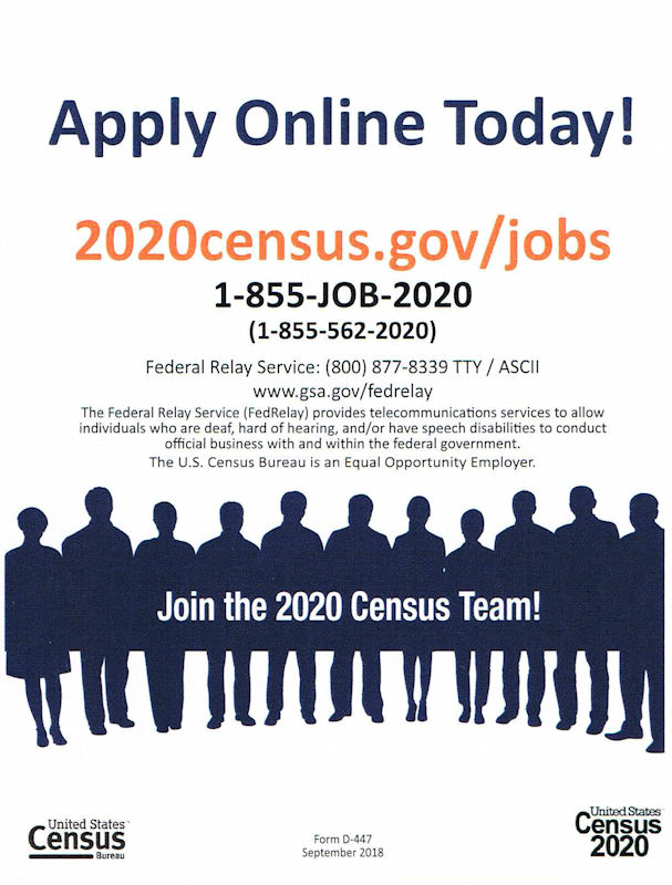 Census Flyer 2020