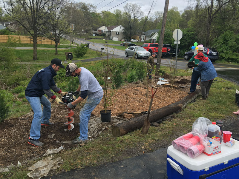 Maplecrest Tree Planting Landscaping