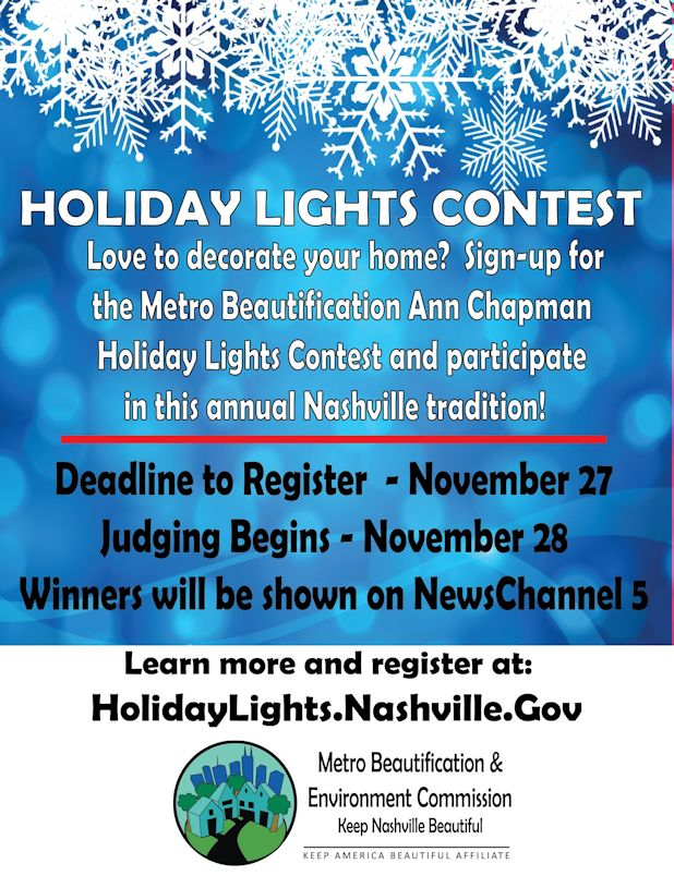 Holiday Lights Contest Flyer